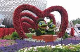 Epcot Events